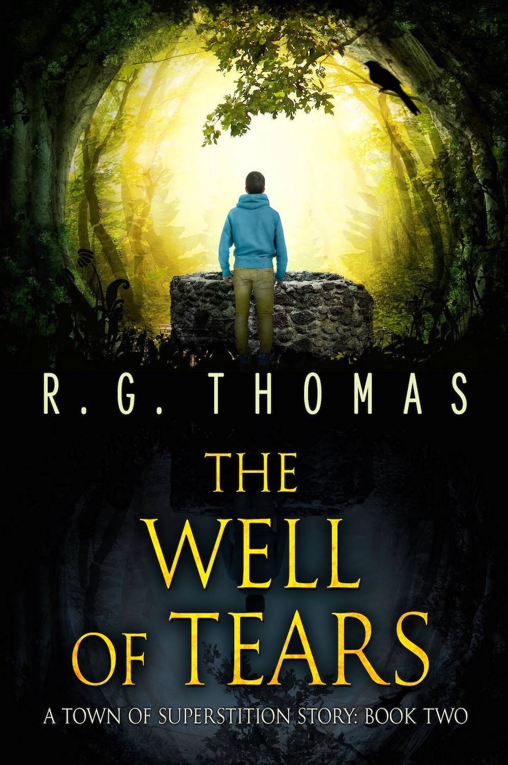 The Well of Tears Book Cover