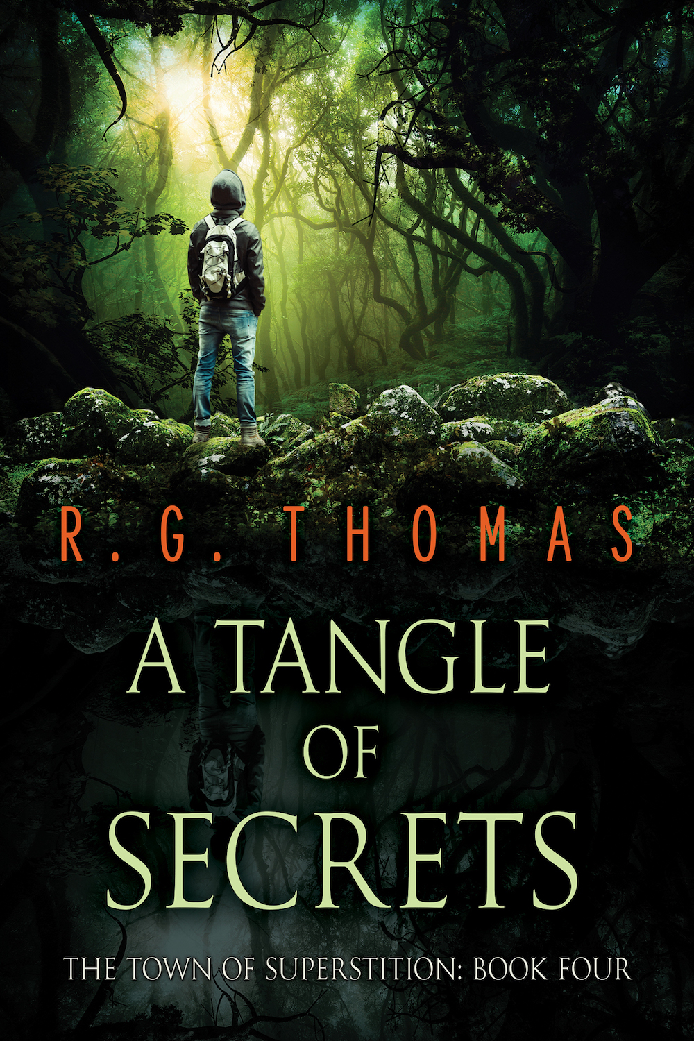 A Tangle of Secrets Book Cover